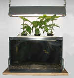 Prototype Aquaponics Lab Test Setup